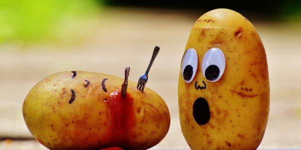 Kartoffeln als Crime Scene